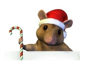 Cmas mouse and candy cane