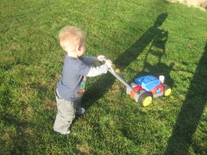 lawnmower fall 2012