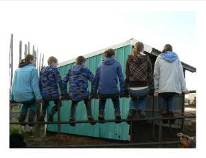 people sitting on fence