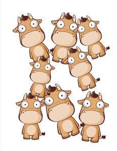 8 cows