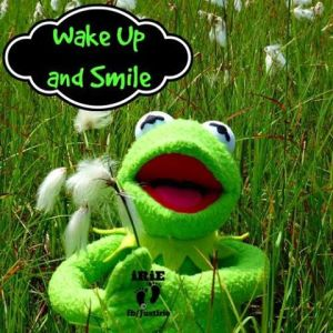 wake up and smile froggy